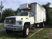 1993 Ford F800