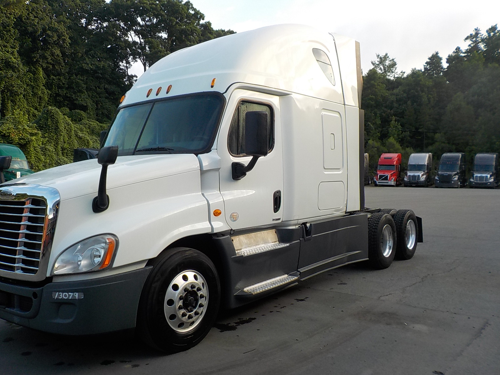 2015 Freightliner Cascadia for sale-59084888