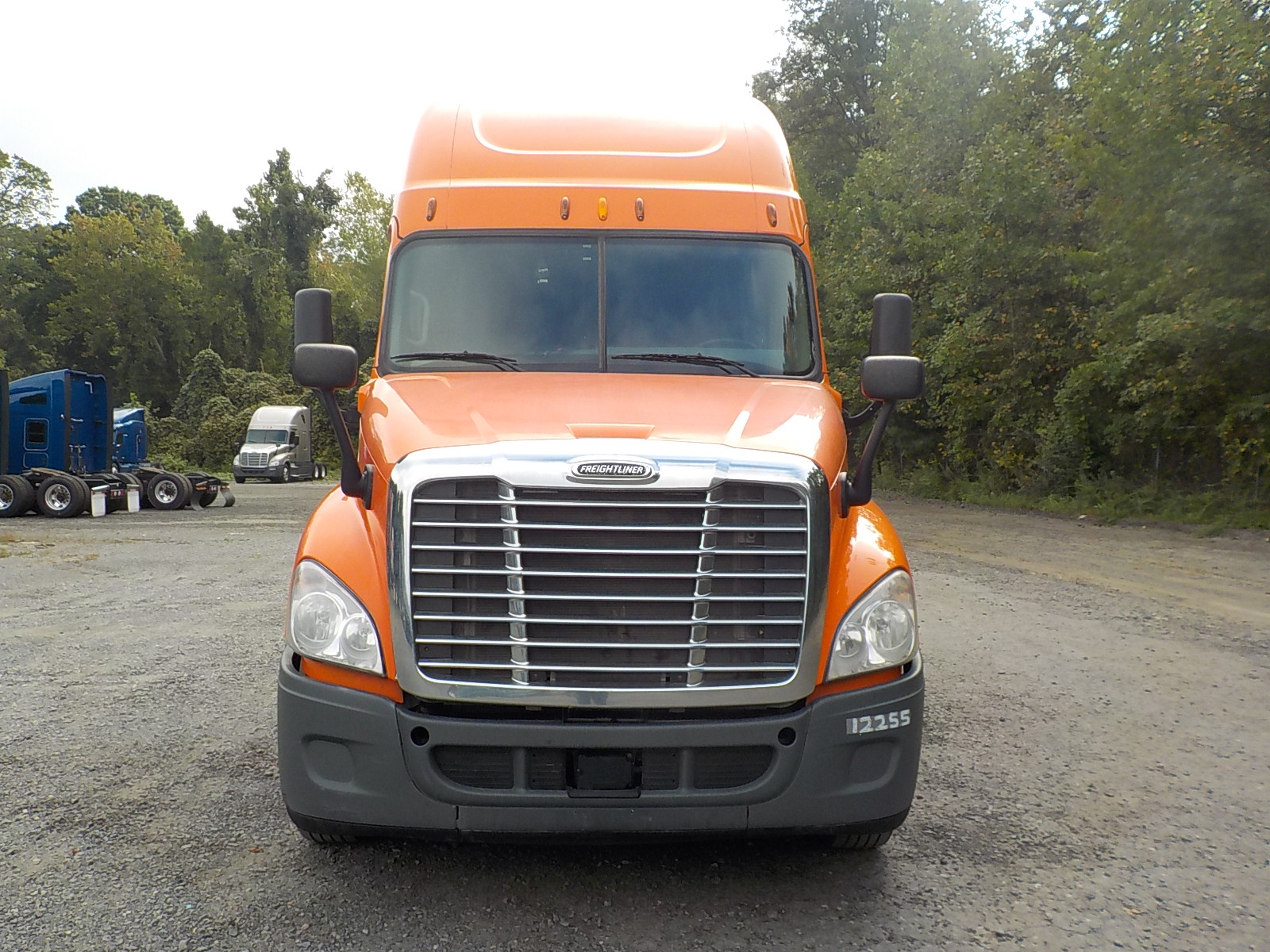 2014 Freightliner Cascadia for sale-59085071