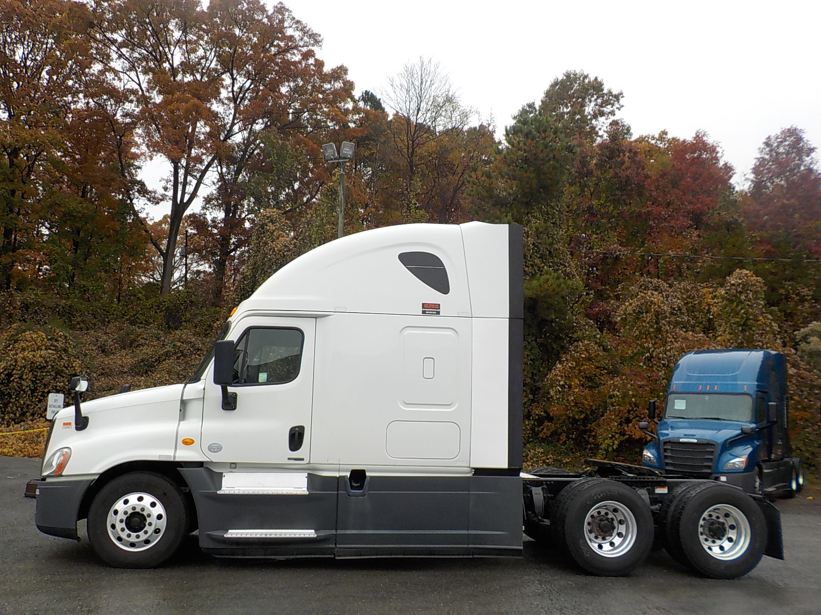 2015 Freightliner Cascadia for sale-59233611