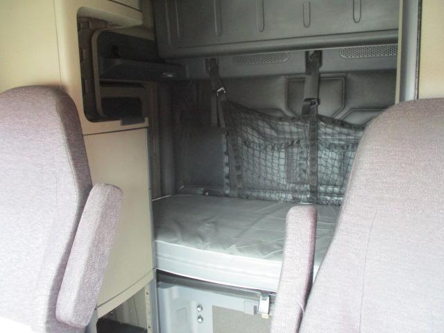 2015 Freightliner Cascadia for sale-59275041